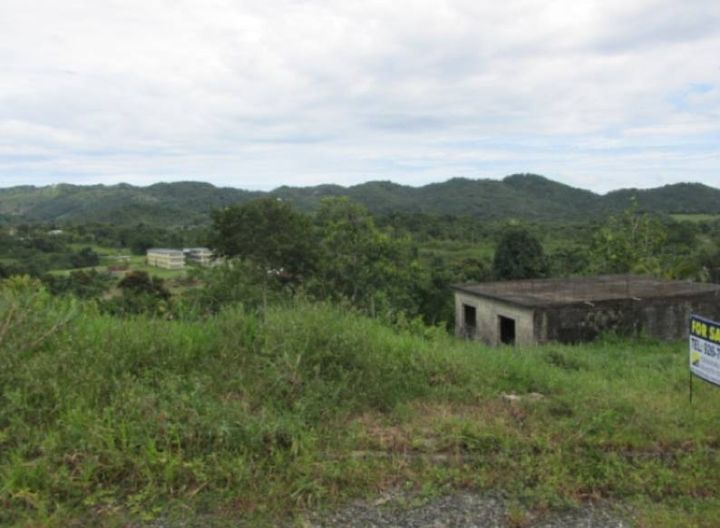 Kent, Darliston, Westmoreland1/3 Acre of land with a partially completed masonry structureThe land is gently sloping dow...