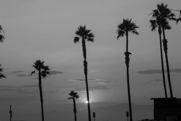 I was lucky enough to take a trip to the West Coast!Noir └AMore West Coast Black & Whites at http://noirnyc.tumblr.com/