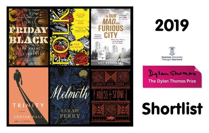 VERY exciting news: Louisa Hall's TRINITY has made it to the shortlist for the 2019 Dylan Thomas Prize! Congratulations ...