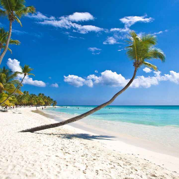 Paradise is waiting ! Did you book your summer holiday to the Dominican Republic yet! #travel #nature #love #photoofthed...